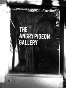 angrypigeon